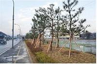 4-1유방동-생활환경숲-사본.jpg